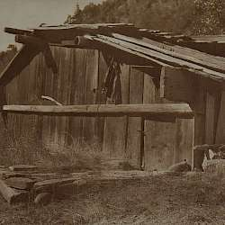 Yurok house on Klamath River  (1923)